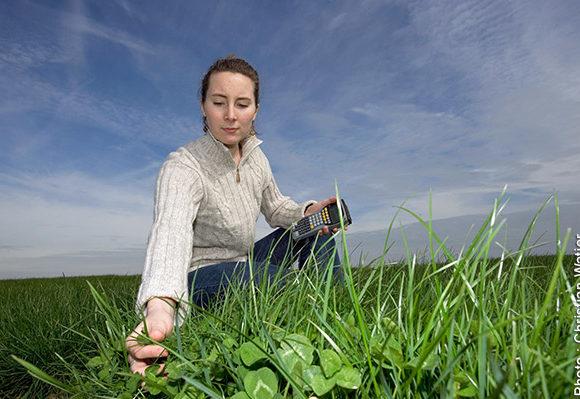 02/2017 – Performer comme technicien conseil en production de semences